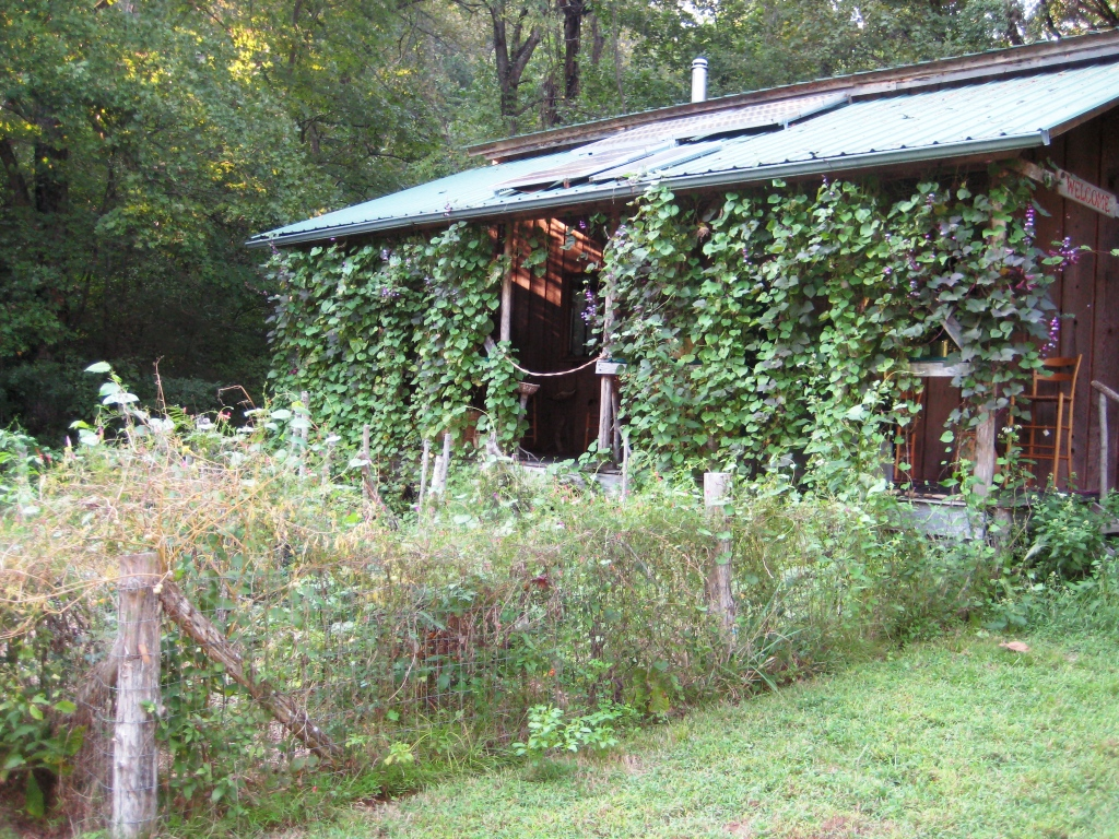 off the beaten path tour | In the Garden with Janet Carson