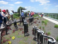 clinton library rooftop garden.may1413