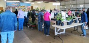 pope county plant sale05