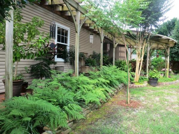 saline county gardens june.14.06