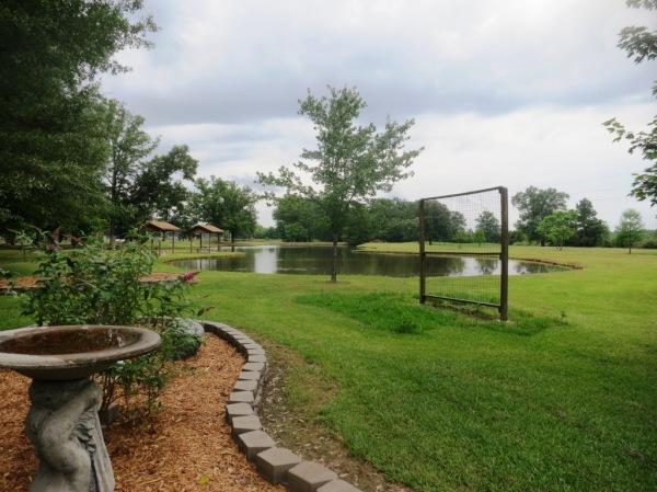saline county gardens june.14.36