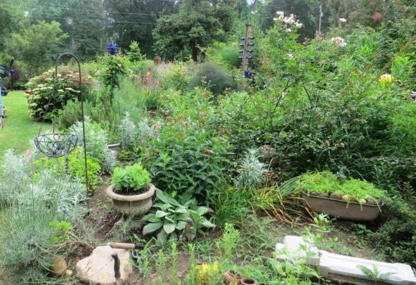 saline county gardens june.14.39