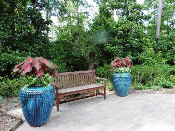 garvan southern inspiration garden july 8.14.3