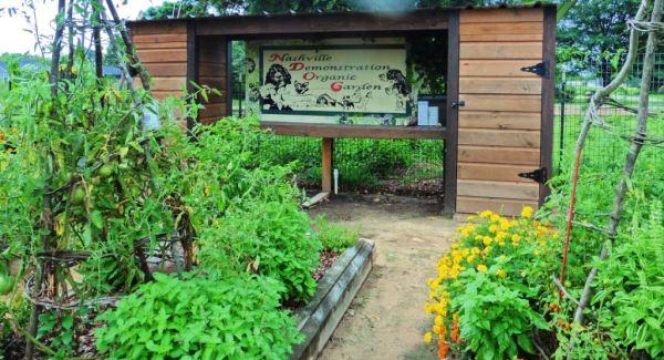nashville demonstration organic garden.july15.04