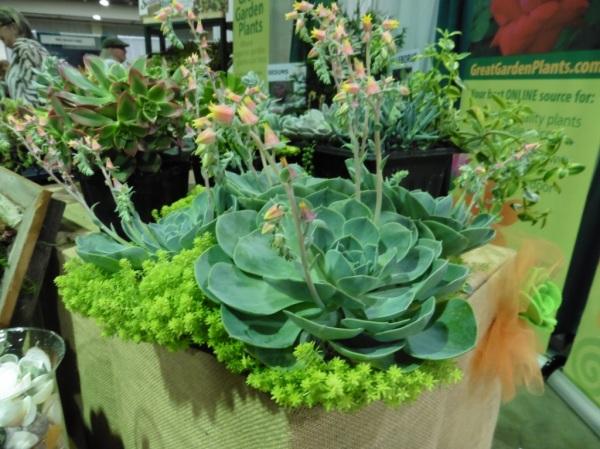 garden writer trade show day 1.2014.05