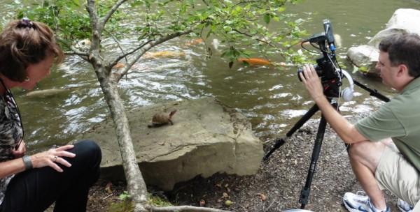 turtle garvan tv sept2.14.9