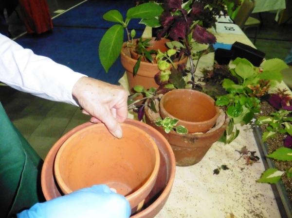 garland co garden expo 14.24