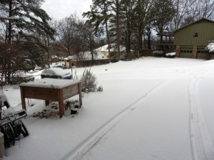 snow mar 5.15 (2)