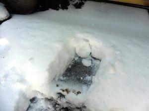 snow mar 5.15 (37)