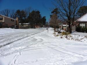 snow mar 5.15 (42)