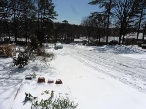snow mar 5.15 (46)