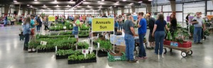 faulkner county mg plant sale may9 (10)