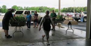 faulkner county mg plant sale may9 (17)
