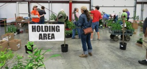 faulkner county mg plant sale may9 (22)