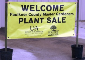 faulkner county mg plant sale may9 (4)