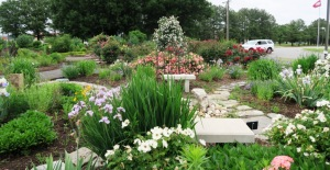 legacy gardens may9 (2)