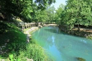 blue springs june15 (4)