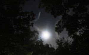 blue moon.july (2)
