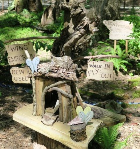 fairy garden garvan.july15 (3)
