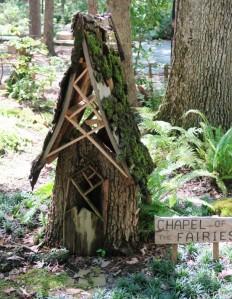 fairy garden garvan.july15 (5)