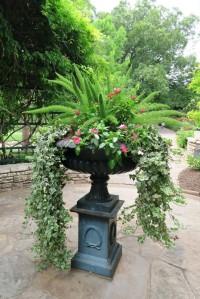 ft worth botanical gardens.july15 (13)