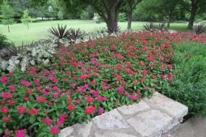 ft worth botanical gardens.july15 (18)