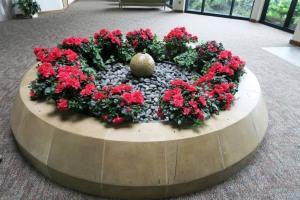 ft worth botanical gardens.july15 (43)