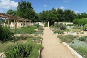 lady bird johnson garden.1516
