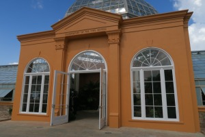new orleans botanical garden (3)