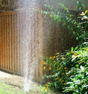 sprinkler system dads (1)