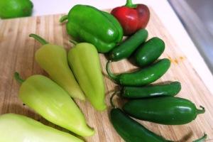 veg harvest aug2.15.4