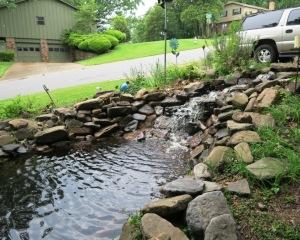 water garden may10.15.2