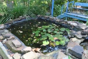 gardens eureka springs.15 (51)