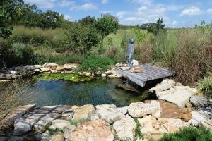 gardens eureka springs.15 (65)