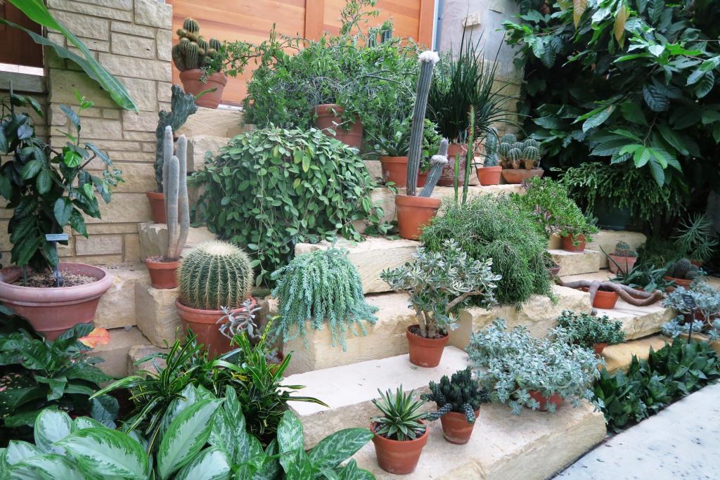 Imgc Rain And Lauritzen Gardens In The Garden With