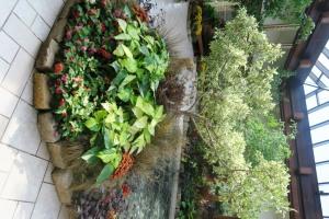 powells garden kc (5)
