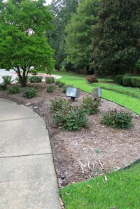 state office landscaping aug.15 (1)