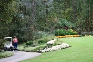 garvan gardens oct.15 (11)