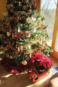 christmas with sun.dec7.152