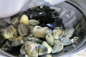 seafood.dec23 (1)