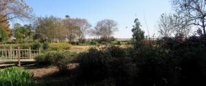 vicky garden eudora.dec.151