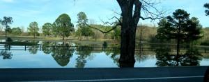 arkansas river.jan (4)