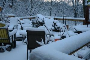 snow jan22 (14)