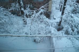 snow jan22 (4)