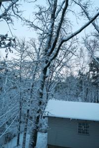 snow jan22 (6)