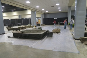 afgs day one garden set up 2016 (30)