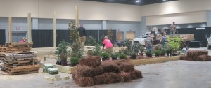 afgs day one garden set up 2016 (31)