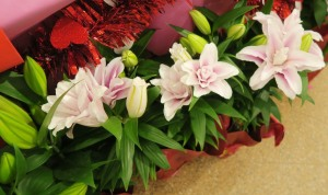 lilies double valentines 16