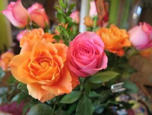 valentine roses16 (4)