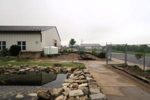 berryville school garden (10)